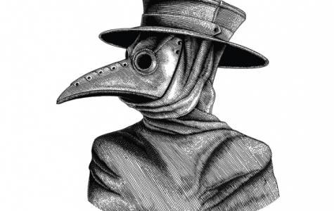 Image from https://nationalpost.com/news/world/is-the-bubonic-plague-making-a-comeback