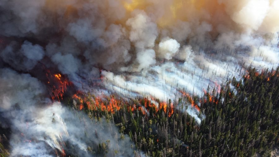 Our World on Fire: The Effects of Climate Change